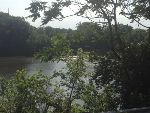 Running in my neighborhood - a view of the Cumberland River